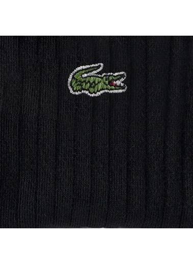 Lacoste Çorap Siyah